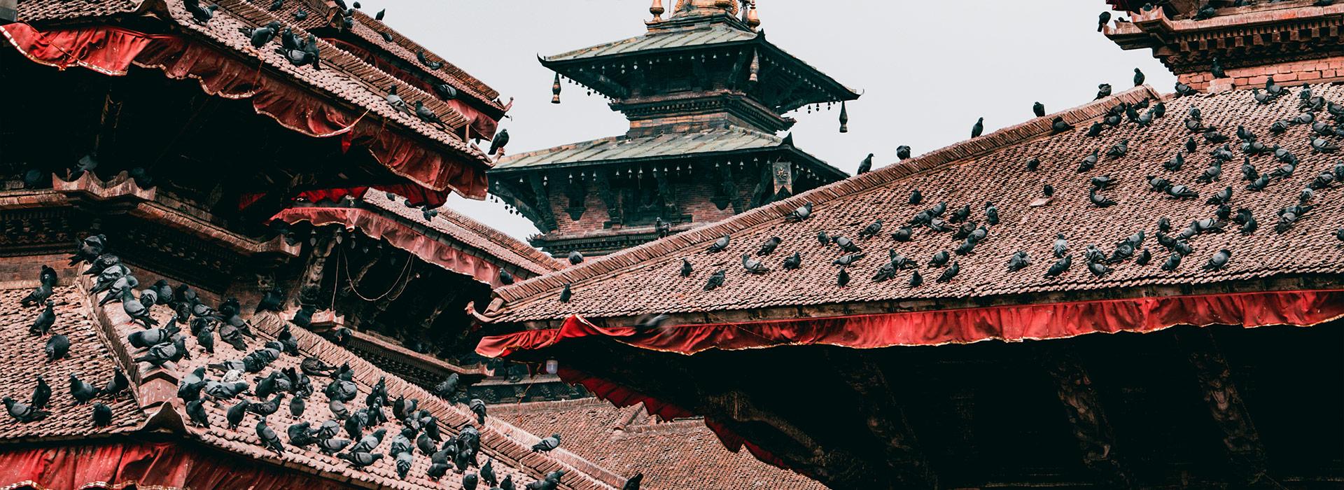 Reisen nach Nepal - Individuelle Reisen nach Nepal - Harry Kolb AG - Tourismus